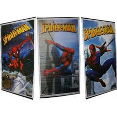 Hanging bamboo wall decor Spiderman