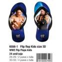Sandalias de playa WWE
