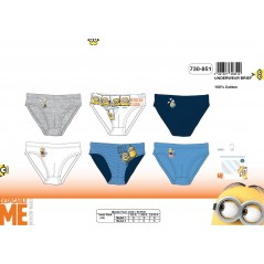 Box of 3 Minions briefs 730-851