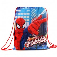 Spiderman pool bag