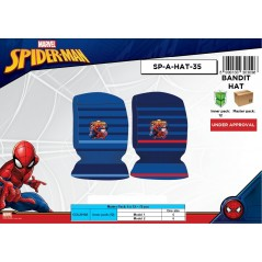 Spiderman Hood