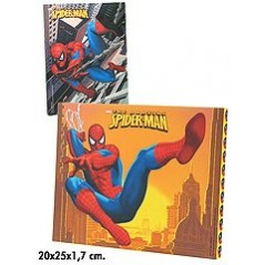 cadre spiderman