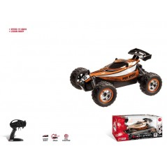 radio controlled car Buggy Dirt 2 1/14