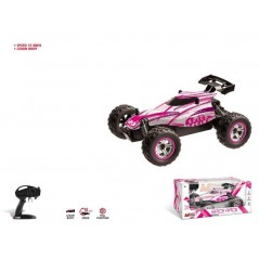 1 / 18th Buggy Radio Controlled Car