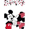 Plaid Polaire Minnie et Mickey Love Disney