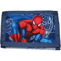 Portfolio Spiderman