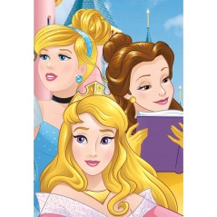 Blanket Princess Disney