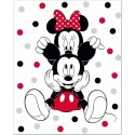 Minnie and mickey Disney Fleece Blanket