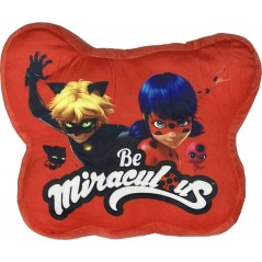Coussin Miraculous Forme