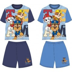 Paw Patrol Beach set
